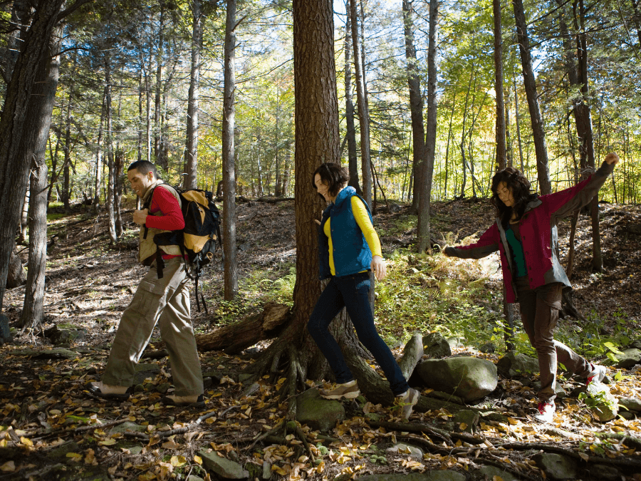 Health Benefits of Hiking in The Woods